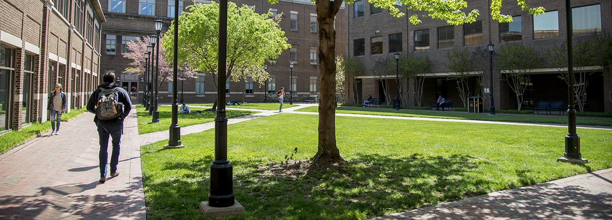 Students walk to class on a sunny spring day in the Oliver Hall courtyard.